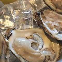 OYsters! (Renee Rendler-Kaplan) Tags: oysters yum fresh delicious huge juicy may 2017 seafood iphone iphoneography reneerendlerkaplan dinner appetizer restaurant consumerist chicagoreader chicagoist skokieillinois wbez ice icy cold