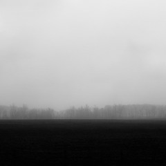 Vanishing Landscape 014 (noahbw) Tags: d5000 nikon abstract blackwhite blackandwhite bw farm fog foggy horizon landscape minimal minimalism mist misty monochrome natural noahbw quiet silhouette sky snow spring square still stillness storm stormy trees weather