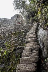 Stairs of Huayna Picchu (matiasrquiroga) Tags: huayna picchu machu peru south america latinoamerica travel trip tour amazing adventure stairs escaleras climbing hiking mountain montaña alto subida empinado steep