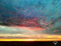 SUNSET SZENARIO #sunset #Schweinfurt #Unterfranken #Szenario #clouds #colourful #Landschaft #landscape #Photographie #photography (benicturesblackwhite) Tags: landscape szenario landschaft colourful unterfranken photography clouds sunset schweinfurt photographie