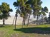 Israël, du haut du Mont des Oliviers, vu sur le désert
