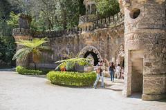 In the park of Quinta da Regaleira (Infomastern) Tags: cyatheales portugal quintadaregaleira sintra trädormbunke architecture arkitektur ferntree människa people