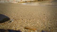 Plage sablonneuse (Astral Eye) Tags: nature sable plage mer eau caillou mineral macro couleur pierre minéraux extérieur été océan saison sol naturel