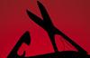 Swiss Army (g3az66) Tags: swissarmy macromondays silhouette lr hmm strobist darkred