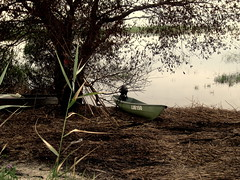 Castaway (elinapoisa) Tags: castaway lake boat latgale