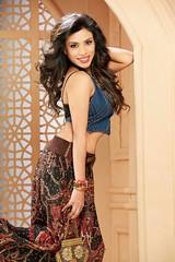 Bollywood Actress SALIYA Hot Photos Set-2 (95)