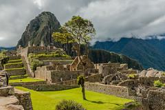 Machu Picchu -_DSC0610