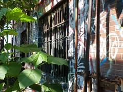 rv98 (daily observer) Tags: readingviaduct philadelphia abandoned philadelphiagraffiti graffiti