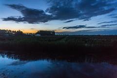 Just before sunrise (pel16931) Tags: bluehour wervershoof westfriesland noordholland holland nederland thenetherlands field sunrise 10000views inexplore sky sunset air clouds dark