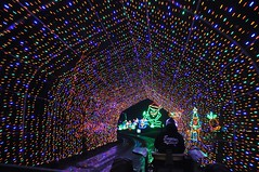 13 Light Tunnel (megatti) Tags: buckscounty christmas christmaslights pa pennsylvania shadybrookfarm tunnel yardley