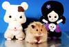 Gucio & Kawaii Cuteness (pyza*) Tags: hamster hammie syrianhamster chomik animal pet rodent critter cute sweet fluffy furry monster