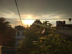 Un hermoso atardecer de #domingo (veronicamuñoz4) Tags: paisaje arboles sky cielo atardecer nubes sol domingo