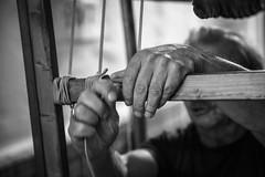 Le mani del Burattinaio (leodamico77) Tags: mani hands arte burattini vercelli piemonte gianduja manos blackandwhite biancoenero niemen show spettacolo marionette canonef2470mmf28lusm canon canoneos5dmarkiii