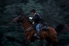 gallop (Nadhphoto) Tags: horses equestrain battle panning horse rider gallop green breeze