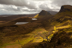 Quiraing, Isle of Skye, Scotland (MelvinNicholsonPhotography) Tags: quairaing isleofskye skye scotland drama storm clouds lochs water tree rowantree landslips mountains melvinnicholsonphotography