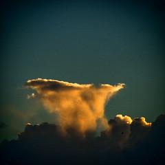 Nuvens / Clouds (Francisco (PortoPortugal)) Tags: 1232017 20160913fpbo3754 nuvens clouds light luz céu sky sol sun porto portugal portografiaassociaçãofotográficadoporto franciscooliveira