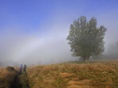Rumbo a la laguna Los Quetros (Mono Andes) Tags: andes chile chilecentral regióndeloslagos niebla crucerupancotodoslossantos daniela caro carla