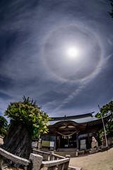 ハロが出た日 #2ーThe day Haro came out #2 (kurumaebi) Tags: yamaguchi 秋穂 nikon d750 nature landscape 山口市 japan 神社 日本 ハロ halo 日暈 雲 cloud