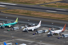 Boeing Flightline (hutchdeen) Tags: kbfi boeing field 737s batik air 7378 max ruili airlines b1597