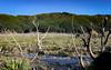 Marlborough-8 (Adrian Rumney) Tags: koromiko marlborough newzealand nz adrianrumney cycling roadcycling sports fitness