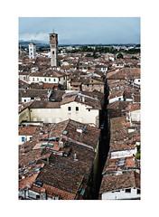 Lucca (m.a.r.c.i) Tags: fujifilm xe1 fujinon toskana toscana lucca landschaft landscape italien italy italia street marci torreguinigi xf1855mm