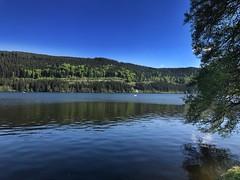 Mountainbike Tour von Freiburg zum Titisee Über das Höllental (Blende2,8) Tags: iphone deutschland badenwürttemberg wasser bäume wald himmel schwarzwald see titisee