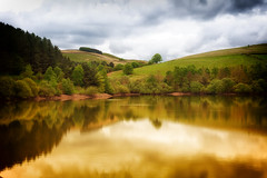 Golden Reservoir (Missy Jussy) Tags: reservoir ogden piethornevalley landscape lancashire water sky clouds hillside trees fields sunlight reflections outdoor outside northwest england canon canon5dmarkll 50mm ef50mmf18ll canon50mm atmosphere