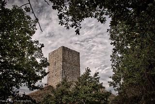 La Tour d'Albon.