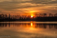 tramonti a nord est (paolotrapella) Tags: tramonto sunset riflesso nuvole cielo sole clouds sky italia fiume pò colors landscape nature reflections view sun calm peaceful