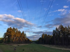Power Lines (Marc Sayce) Tags: pylon power lines sundown sunset woolmer ranges forest conford whitehill longmoor south downs national park hampshire may spring 2017
