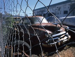 Best-Laid Schemes (RZ68) Tags: 1951 chevrolet chevy car split window rusty junkyard sitting old classic bokeh selective focus rz67 velvia provia e100 fence cyclone chain link san francisco bay area fleetline styleline rotting storage scrap california epson scanner