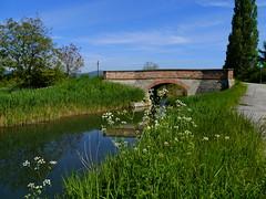 Baden, Weingartenbrücke (rudi_valtiner) Tags: wienerneustädterkanal baden wasser water kanal channel weingartenbrücke tribuswinklerviehtriebbrücke brücke bridge niederösterreich loweraustria österreich austria autriche fe