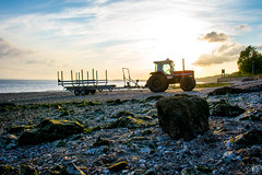 Tractor - Part Two (Ash' Burnham) Tags: bridge hull hull2017 yorkshire bridges beach beaches pretty beautiful red colourful tractor tractors sunset golden hour transport vehicle river humber hessle hessleforeshore humberbridge