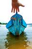 lua de mel III-5 (Bruno Laria) Tags: am amazonas amã©ricadosul br bra brasil estadodoamazonas amazonia ambiente humano humanos luademel pessoa pessoas rio serhumano sereshumanos social sociedade tapajos ã¡gua