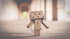 Untitled (#Weybridge Photographer) Tags: adobe lightroom canon eos dslr slr 5d mk ii mkii brompton cemetery kensington west london danbo danboard kiyohiko azuma manga cardboard box amazon robot character figure
