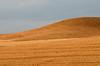 Sicilyscape (ciccioetneo) Tags: sicily earth countryside franchetto catania sicilia harvest harvesting ciccioetneo italia italy country sicilyscape sicilylandscape borgofranchetto minimal minimalisticlandscape minimallandscape francofontana fontana