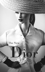 the new (Eric win) Tags: doll fr it royalty fashion reroots vanessa aerodynamic dior new