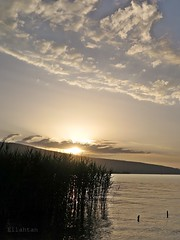 See U soon (nathaliedunaigre) Tags: sunset sunsetlight coucherdesoleil lac lake lacdannecy sky ciel nuages clouds roseaux reeds silhouettes contrejour