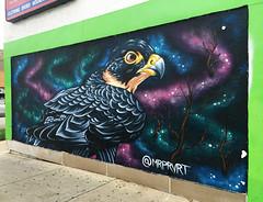 Gaze of the Raptor by Mr. Pervert (wiredforlego) Tags: graffiti mural streetart urbanart aerosolart chicago illinois ord mrprvrt bird