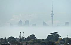 A Foggy Morning (sallyNZ) Tags: scavenger5 skytower fog auckland city silver 52in2017