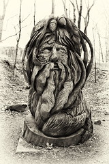 The Green Man (6079 Jones, P) Tags: canon eos 1200d canonefs1855mm kitlens peak district derbyshire england uk wood carving tree sprite troll elf spirit woods forest img6206 jackinthegreen robinhood johnbarleycorn kingofmay greenman blackandwhite monochrome