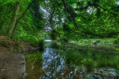 Wupper (mmbottrop) Tags: pentax hdr k3 long exposure wupper flow wild river nd 3 forest rapids weir tree trees water protection area waterfall