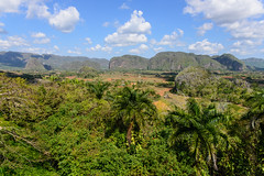 Vinales, Cuba - View on the Valley of Vinales (GlobeTrotter 2000) Tags: carribean cuba del pinar rio tourism travel vinar visit