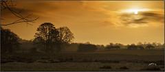 Lucky Dip. Part 4. (Picture post.) Tags: landscape nature green sunrise springtime trees fields paysage arbre sunburst clouds