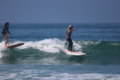 IMG_9393 (palbritton) Tags: surf surfing surfer ocean waves beach surfergirl sea