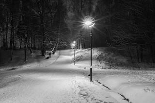Udelny park at night