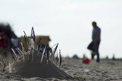 (LuposAter) Tags: nordsee northsee sommer burg sandburg bokeh cuxhaven summer beach