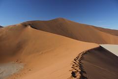 The dunes at Sossusvlei (cathm2) Tags: africa namibia sossusvlei desert dunes sand travel light landscape scenery deadvlei