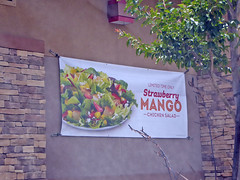 4S Ranch 6-11-17 (10) (Photo Nut 2011) Tags: 4sranch sandiego california wendys
