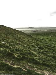 ......along the way....... (mishlove1) Tags: britian cumbria england greatbritian hadrians hadrianswall hadrianswallwalk hike hikehiking hiking northofengland omdem10ii olympus travel uk vacation iphone